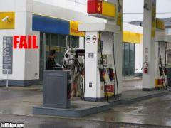 fail-owned-horse-fuel-fail.jpg