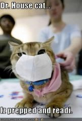 lolcat_funny-pictures-cat-is-a-doctor.jpg