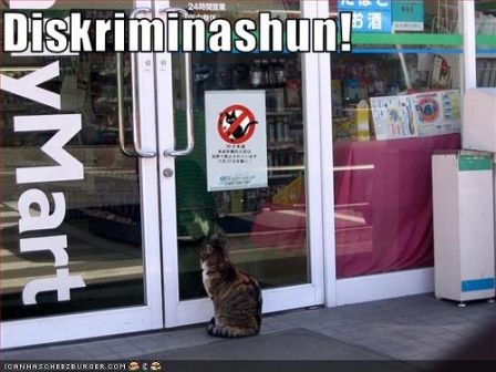 lolcat_funny-pictures-cat-is-discriminated-against