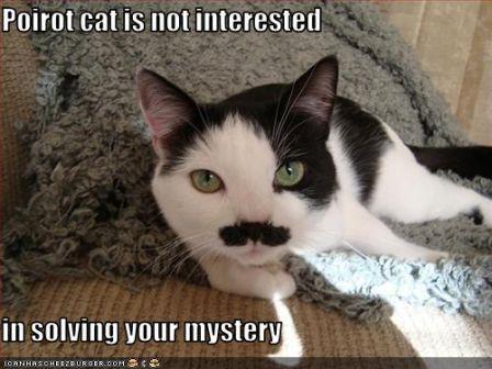 lolcat_funny-pictures-cat-poirot-cat.jpg