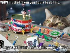 lolcat_funny-pictures-cat-will-destroy-your-work.jpg