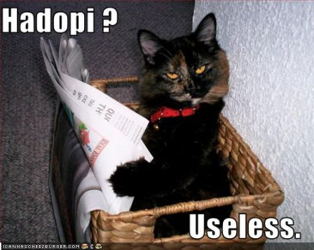 lolcat_hadopi_useless