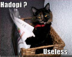 lolcat_hadopi_useless