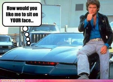 lolcelebrity-pictures-david-hasselhoff-sit-face